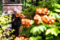 Travel photography destination New York: downtown violin player woman manhattan central park