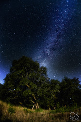 night photography, milky way and stars, northern california hils