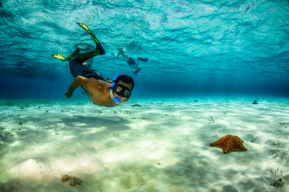 Commercial photography: underwater snorkel with sea star, swimming shallow sandy caribbean ocean