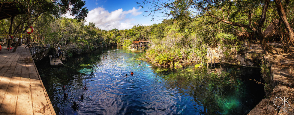 Landscape photography: cenote in quintana roo, Mexico