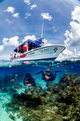 Commercial photography: scuba mau underwater split shot, above under of mesoamerican barrier reef, boat and 2 scubadivers
