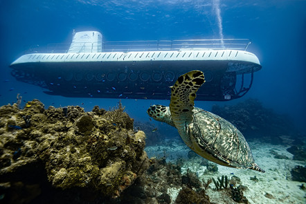Commercial photography: Atlantis Submarine and sea turtle. Underwater caribbean ocean, mesoamerican barrier reef
