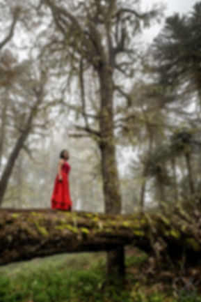 woman in red dress stands among trees in Villarrica, Chile