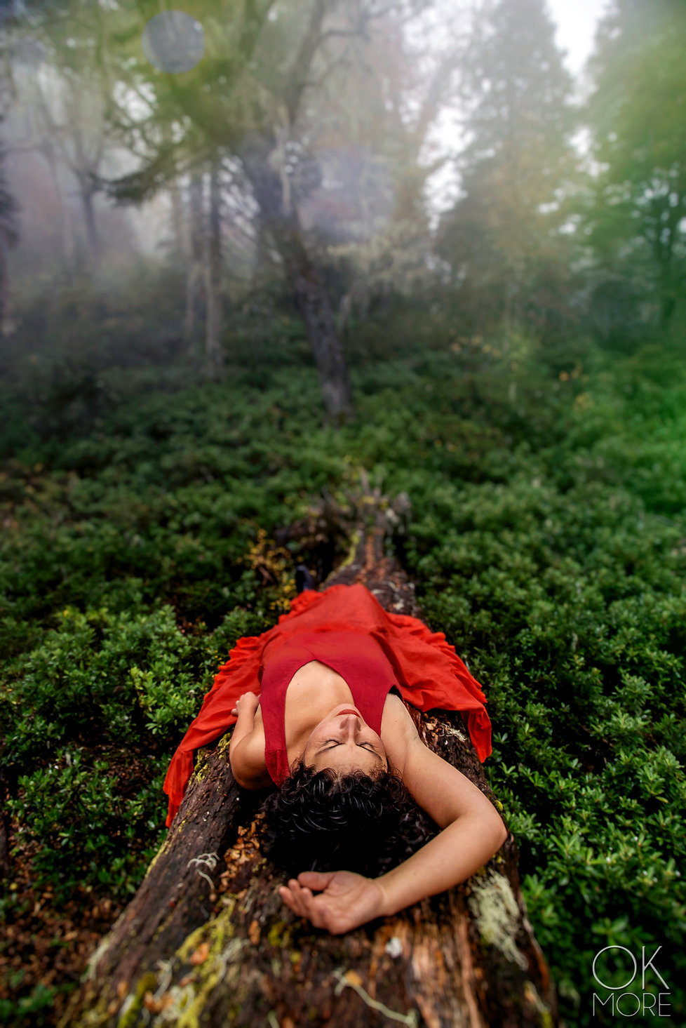 woman in red dress lays on a fallen tree in Villarrica, Chile