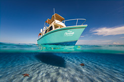 Commercial photography: Underwater caribbean ocean, split shot of leisure boat over sandy shallows and sea stars
