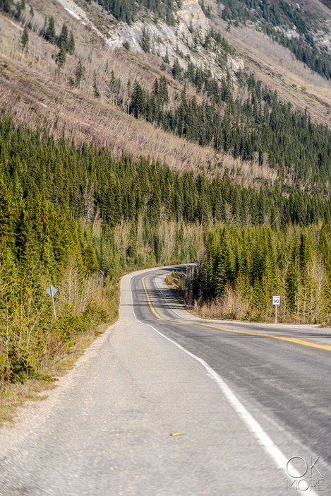 Travel photography, destination Canada Rockies, ice highway banff to jasper