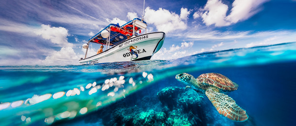 Commercial photography: Underwater caribbean ocean, mesoamerican barrier reef, split shot of scuba dive boat and sea turtle in the wave