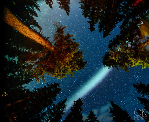 Travel photography, destination Canada Rockies night stars forest woods, aurora boreal, northern lights