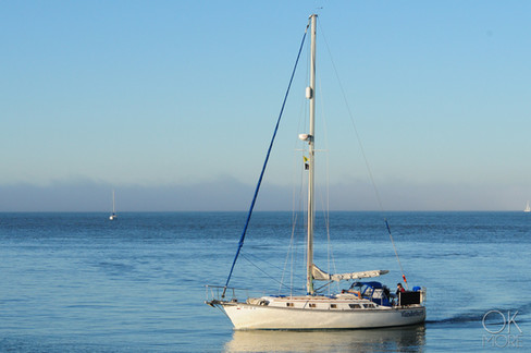 Travel photography destination California: sailboat in the bay area, pacific ocean