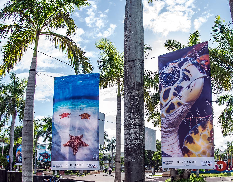 Underwater photo exhibit in downtown Cozumel, Mexico