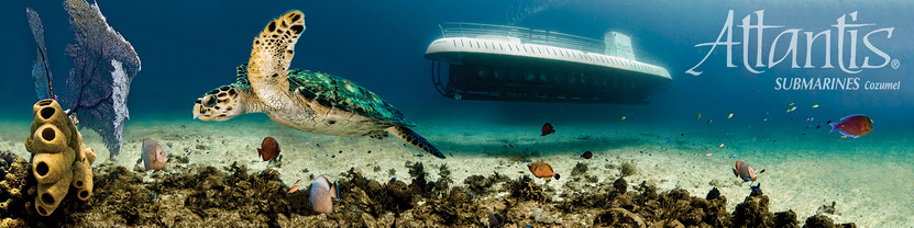 Commercial photography: Atlantis submarine and sea turtle, mesoamerican barrier reef, fishes underwater
