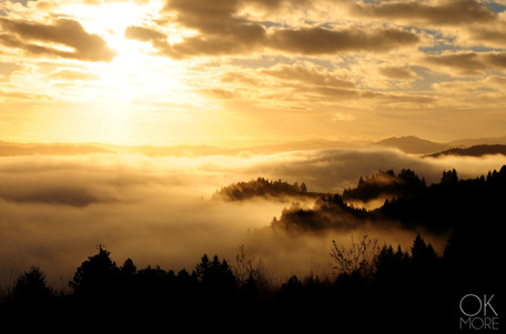 Travel photography destination California: humboldt sunrise over the foggy valley