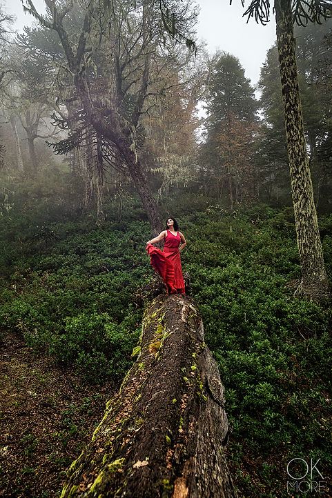 woman in red dress dances among trees in Villarrica, Chile