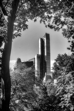 Travel photography destination New York: downtown skyscraper buildings manhattan central park black and white
