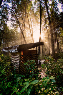 Travel photography destination California: humboldt outhouse in the woods at sunrise