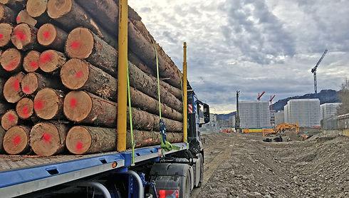 0 Baustellenholz Spezialsortimente 3000x