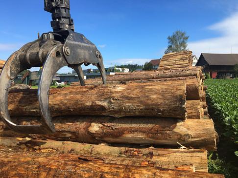 11 Holzhandel 2000x1500px.jpg