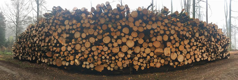 2 Holzhandel 2000x680px.jpg