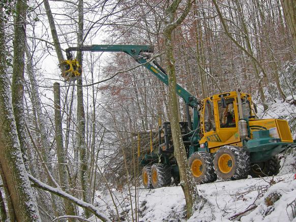 3 Landschafts- Naturschutzpflege 2000x15