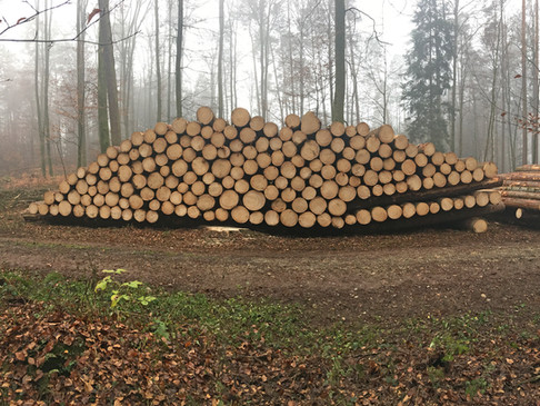 5 Holzhandel 2000x1500px.jpg