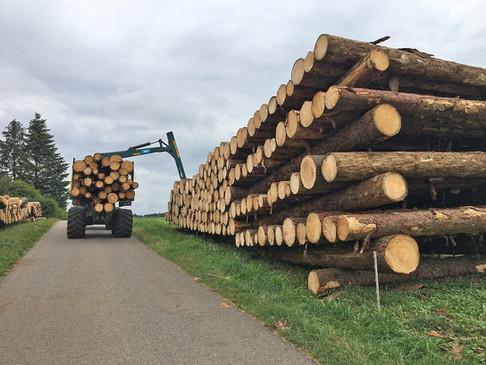 1 Holzhandel 2000x1500px.jpg