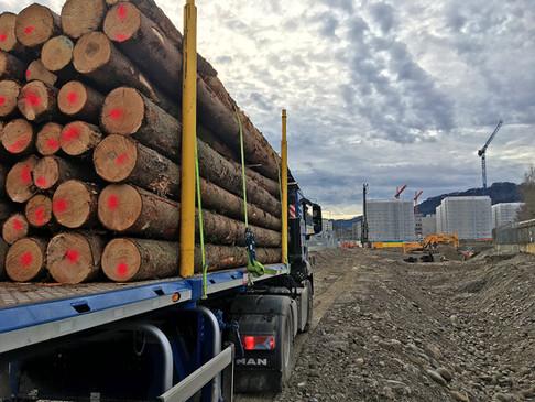 1 Baustellenholz Spezialsortimente 2000x