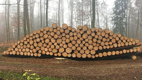 0 Holzhandel 3000x1700px.jpg