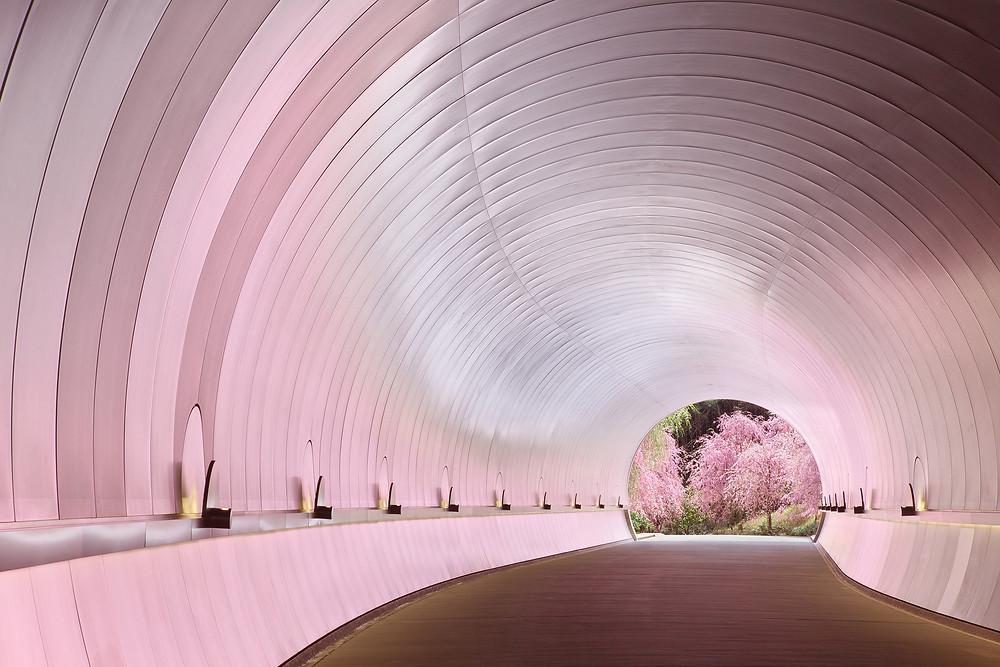 Miho (Interior), Kyoto