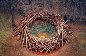 Nils Udo, 'Clemson Clay Nest', 2005, South Carolina