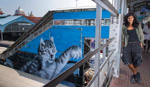 Anpu Varkey, 'Nine Tails: Action Cat', 2015 from Chennai, India