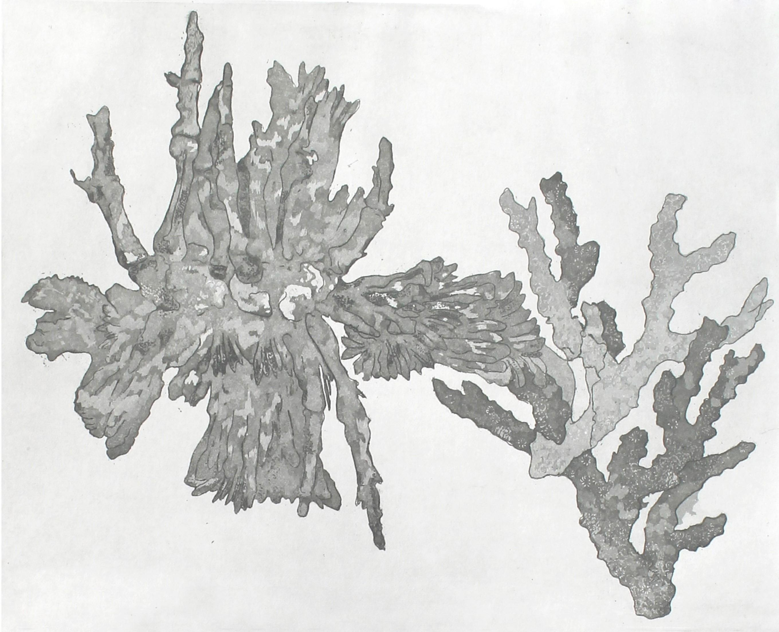 Mutation I,Etching _ Aquatint ,2020