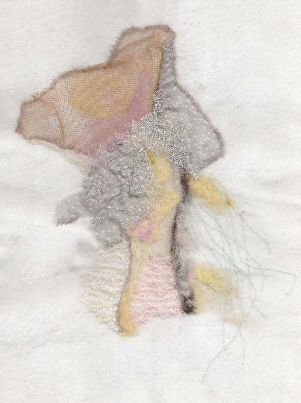 Lost Organ I ,needle felting,2017