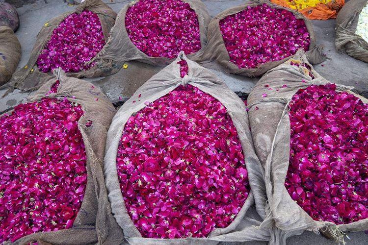 Flowers from Phool Mandi, Jaipur's Wholesale Flower Market