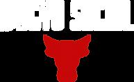 logo_transparent_background_white.png