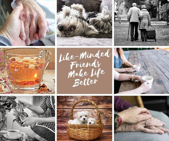 Like-Minded Friends Make Life Better