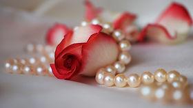 rose-3030462_1920.jpg