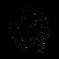 Logo Noir site alpha.png