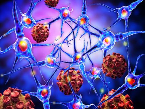 Nueva investigación sugiere que el coronavirus puede tener efectos neurológicos nocivos.
