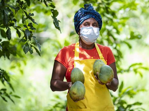 Más de 2.800 productos de mango y níspero se vendieron en Sazón Atlántico