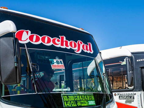 En Vídeo || En Soledad, ataque sicarial a conductor de bus de la empresa Coochofal