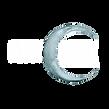 PSchick-logo-KO.png