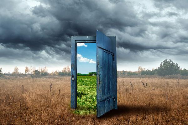 Creative background. Old wooden door, bl