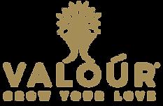 Valour Lab Created Diamonds Logo.png