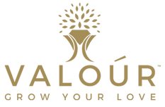Valour Lab Created Diamonds Logo.png