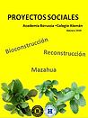 proyecto social colegio aleman 2019.png