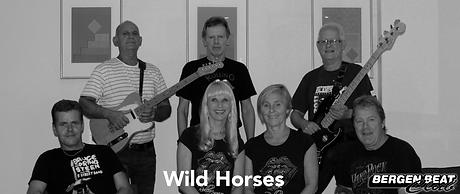 wild horses 1.png