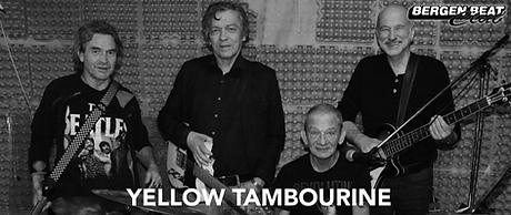 YELLOW TAMBOURINE.png