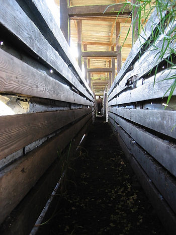 Pauahi Cattle Chute, Historic Hawaii, Cowboy Cabins, Sherwood Greenwell, Kealakekua Ranch