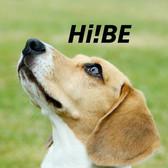 Hi!BE ハイビ