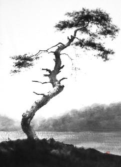80.3×100cm, 2011 한지에 수묵 Muk on korean paper